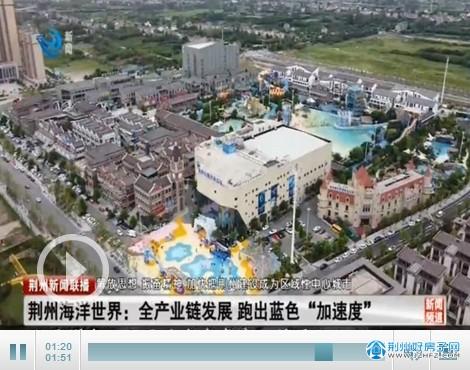 """荆州海洋世界:全产业链发展 跑出蓝色""""加速度"""""""