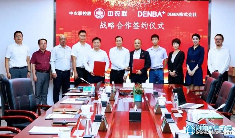 中农联与DENBA+战略合作