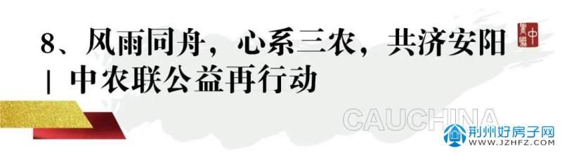 中农联公益活动