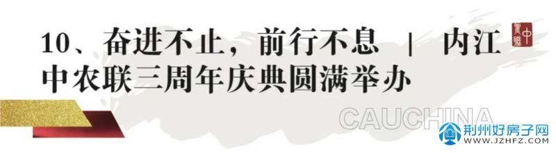 中农联三周年庆典