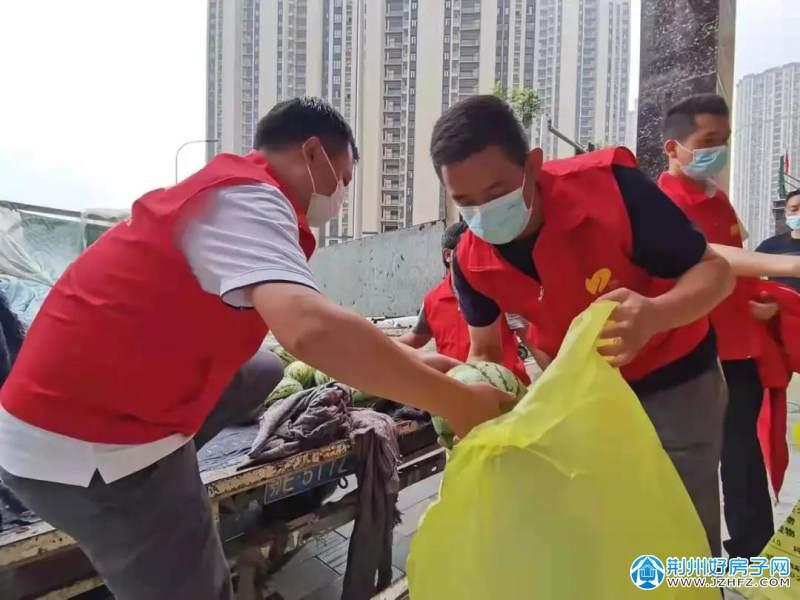 碧桂园鄂南区域党员志愿者与碧桂园荆州物业分公司志愿者搬运西瓜