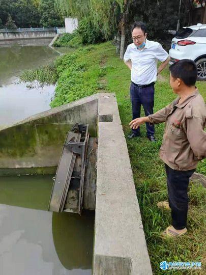 杨冰同志督办检查城区水环境整治及防洪排涝工作