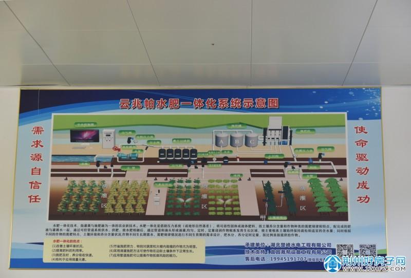 荆州区:打造江汉平原绿色农田建设荆州样板