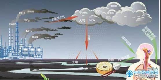 环境污染网络图