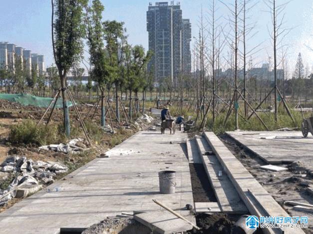 荆江沙市段(柳林洲大市场-沙市汽渡码头)生态修复与保护项目