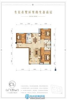 C1戶型120㎡三室兩廳兩衛