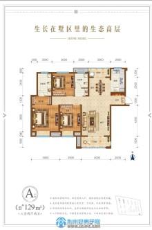 A戶型129㎡三室兩廳兩衛