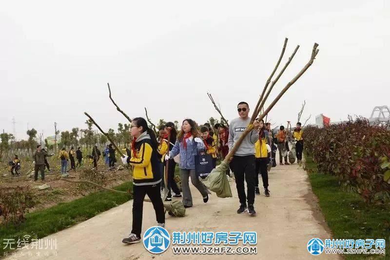 联投国际城植树