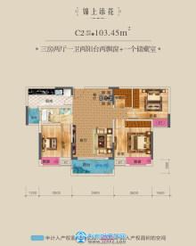 103.45㎡三室两厅一卫中间套C2户型